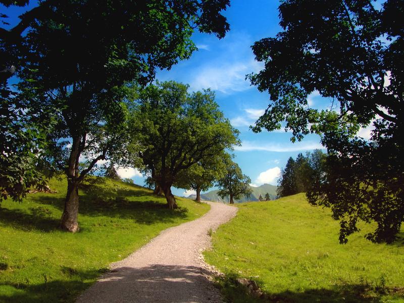 Vitalhotel am Stadtpark::Impressionen aus der Umgebung